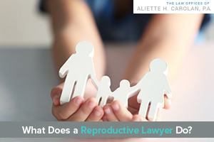 What Does a Reproductive Lawyer Do